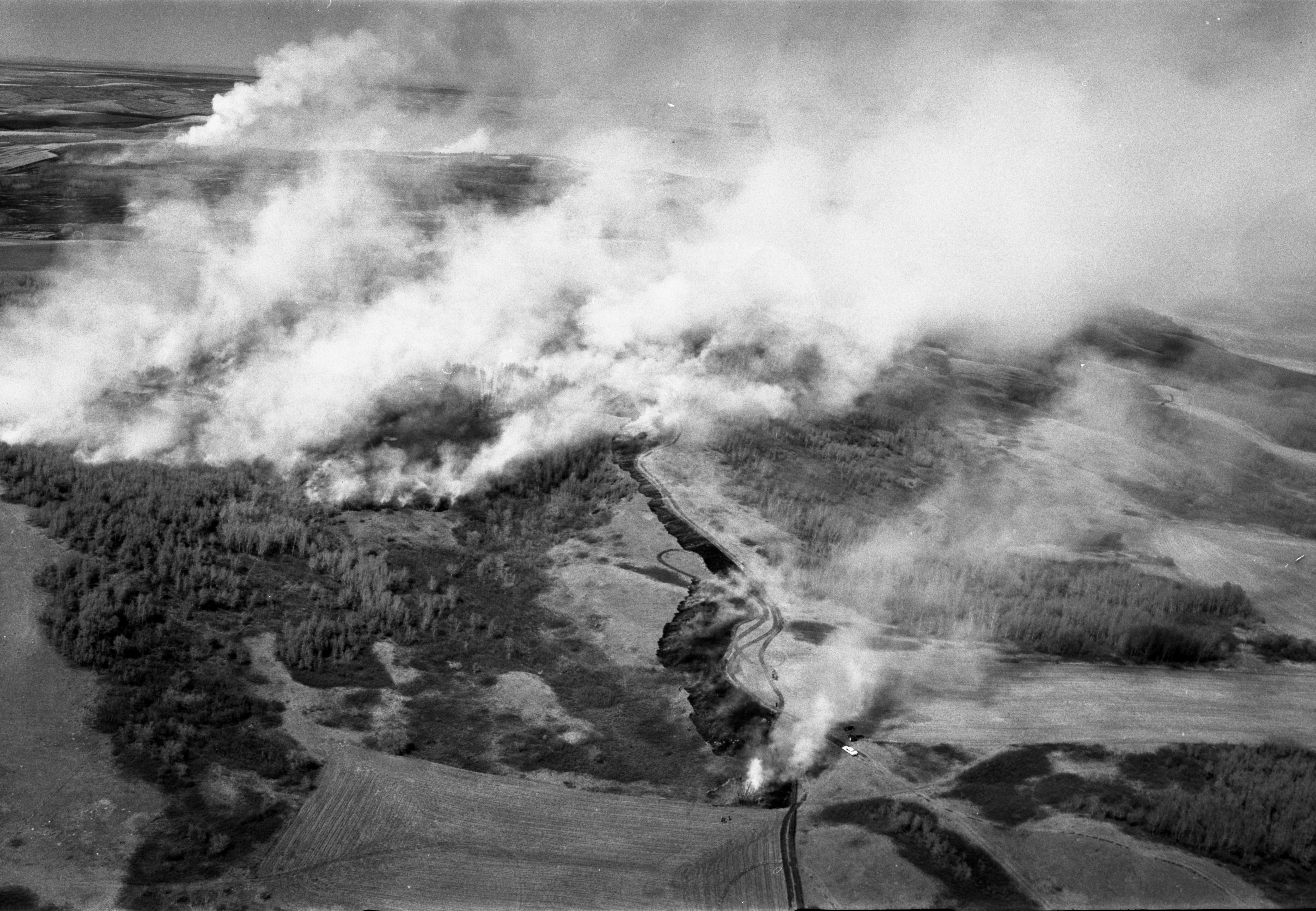 Aerial image of a forest fire.