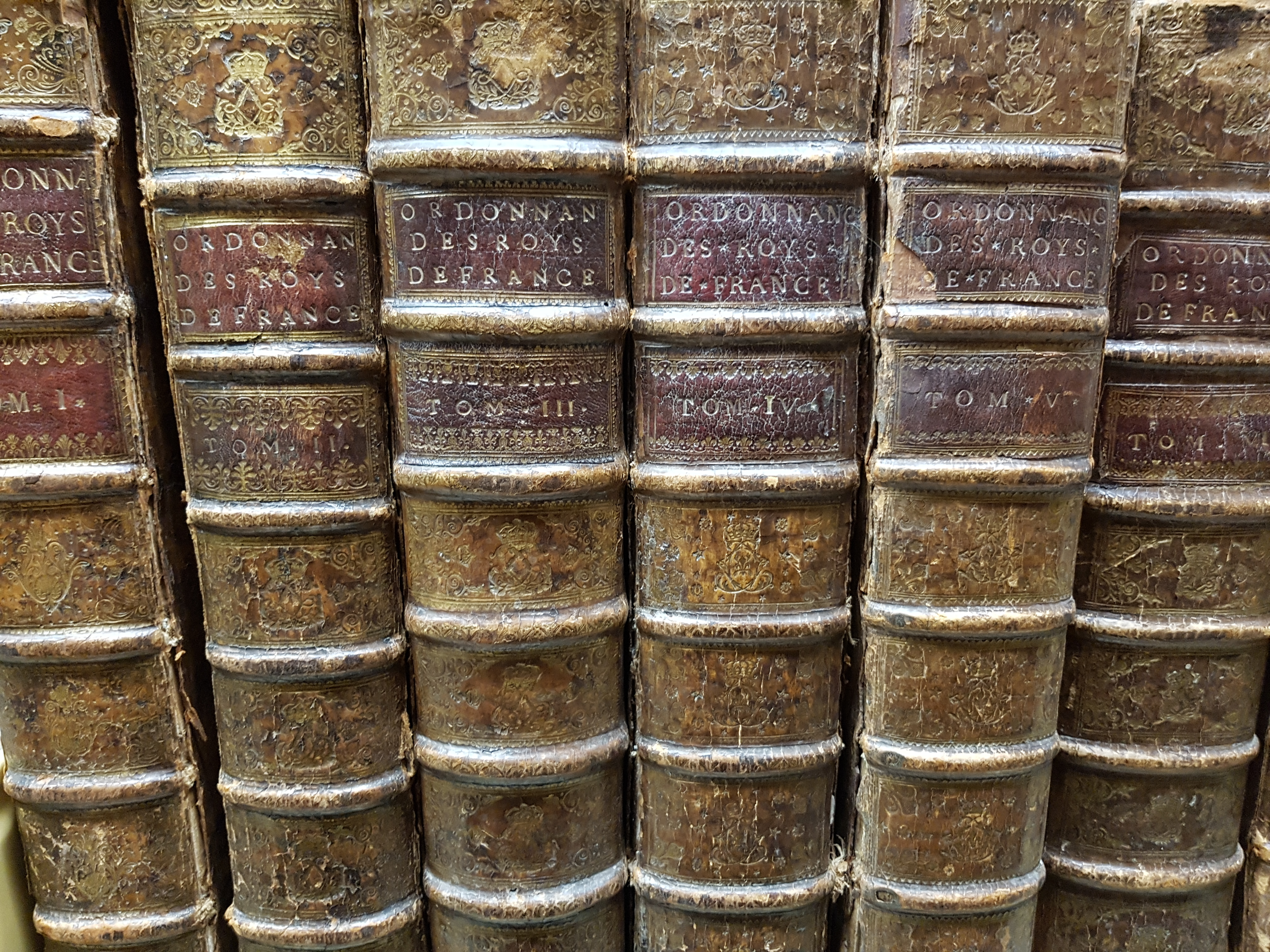 Photograph of the spines of 6 antique, leather-bound books lined up on  a shelf.