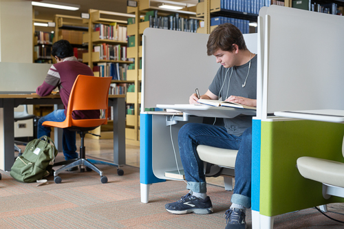 Two students studying in the individual carrels in the Murray Library North Wing